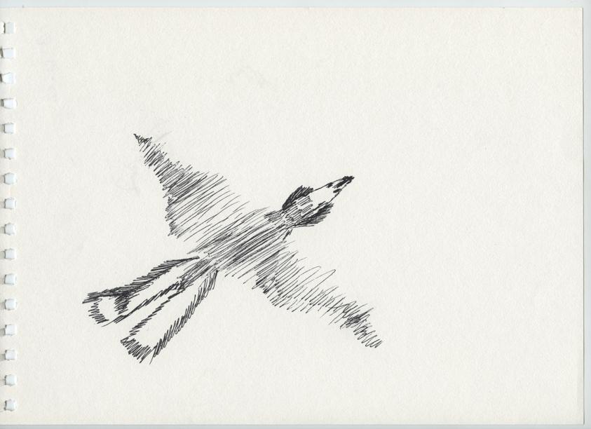 Zeichnung_2017x_022